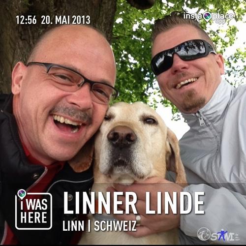 Unter der Linde von Linn.