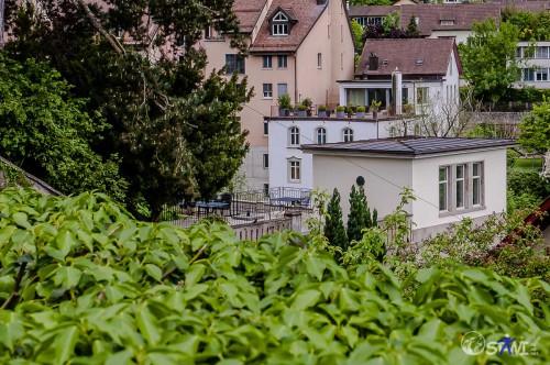 Blick auf den Stadtgarten.