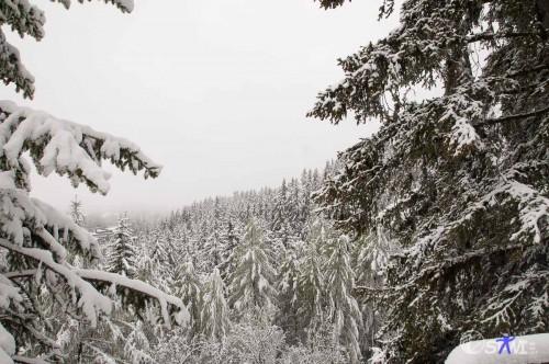 Winterlandschaft im Mai.