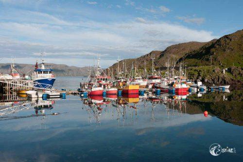 Fantastisches Wetter im Fischerhafen.