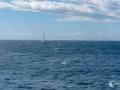 Erster Blick auf das Meer