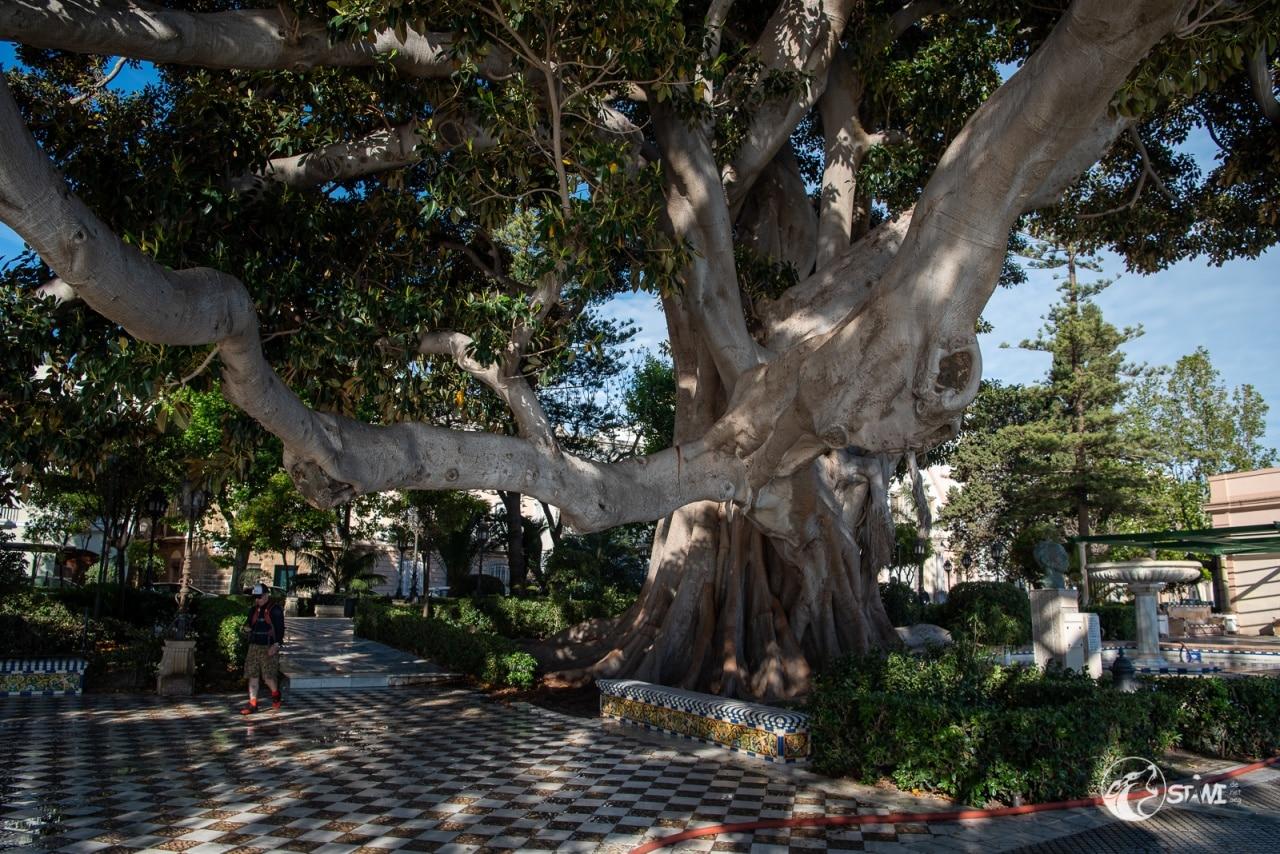 Jardines de Alameda Apodaca